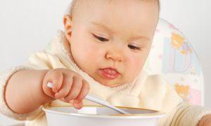 Что входит в меню и как выглядит режим питания 10-месячного ребенка?