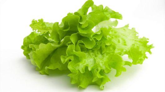 Разрешены ли листья салата при ГВ?