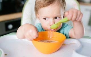 Каким должно быть питание детей до года?