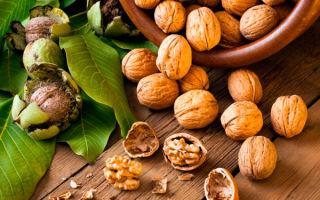 Какие орехи можно при грудном вскармливании ребенка? Польза и вред при лактации.