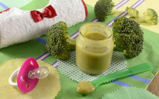Рецепты из брокколи для прикорма — пюре, суп, запеканка