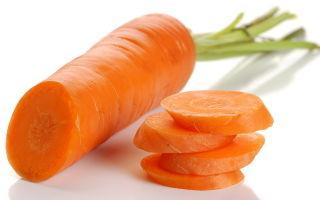 Когда вводить в рацион морковь при грудном вскармливании?