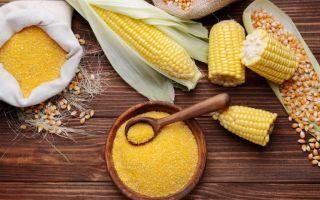 Можно ли маме кукурузную кашу при грудном вскармливании?
