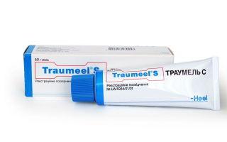 Использование траумеля при лактостазе — эффективно ли?