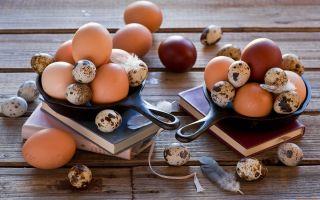 Яйца при грудном вскармливании: польза или вред для новорожденного?
