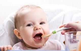 Из чего состоит меню и рацион ребенка в 11 месяцев?