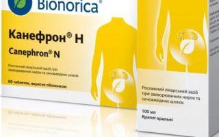 Можно ли принимать препарат Канефрон при грудном вскармливании (лактации)?
