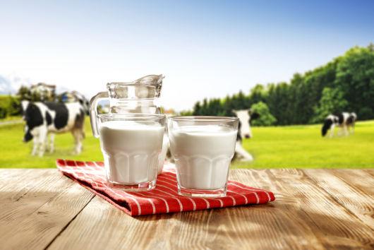 Когда можно начинать давать ребенку коровье молоко?