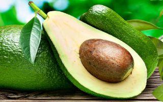 Можно ли авокадо кормящей маме при грудном вскармливании — за и против