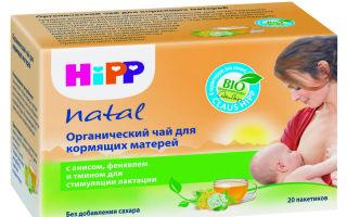 Эффективен ли чай Хипп для лактации?