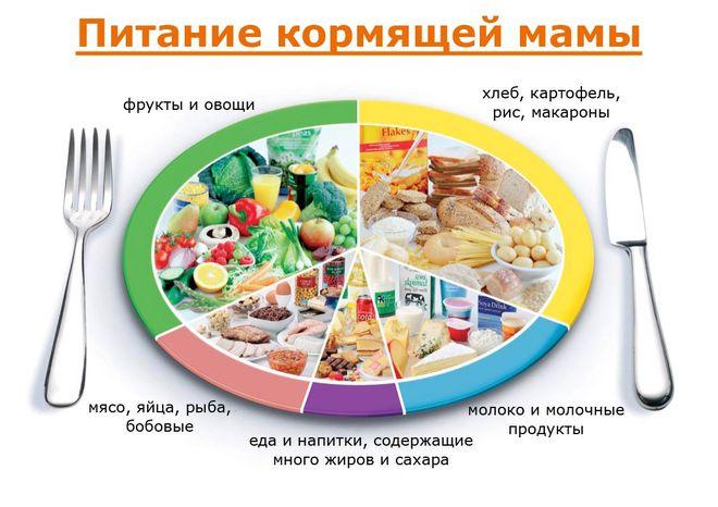 Рацион питания