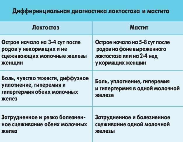 Главные отличия