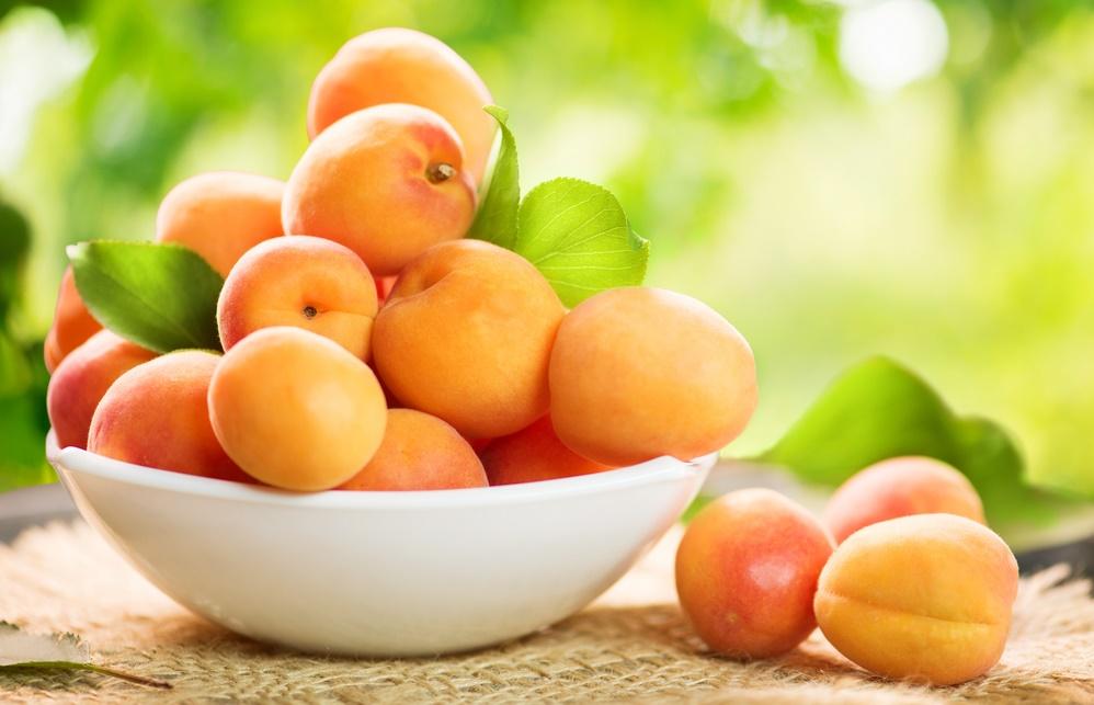 абрикосы при гв
