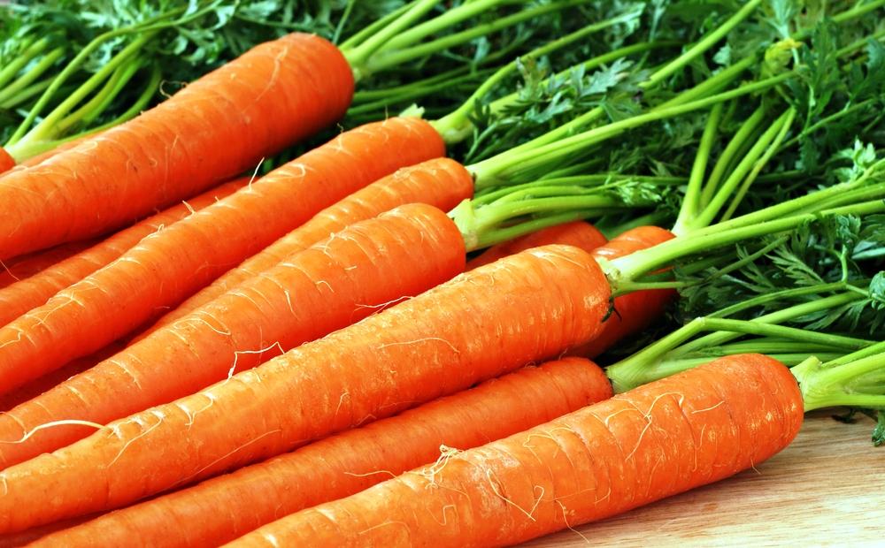 морковь при гв
