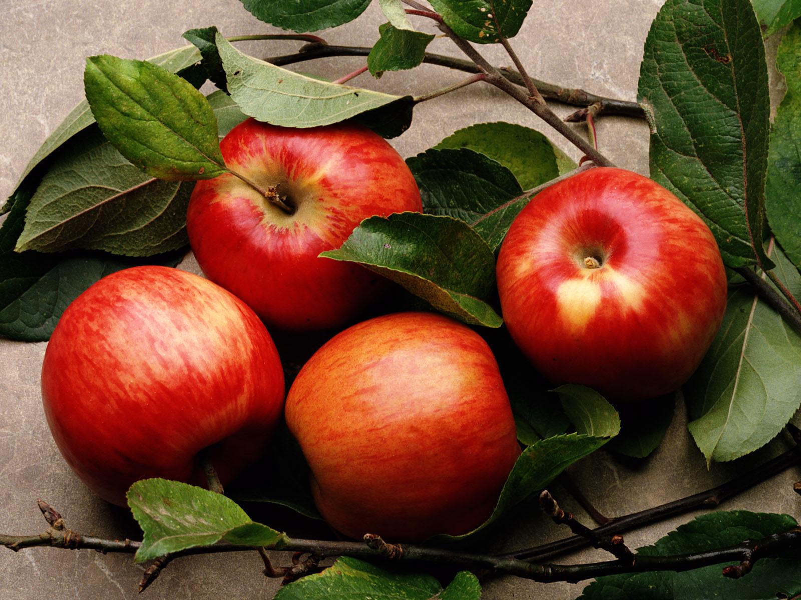 употребление яблок