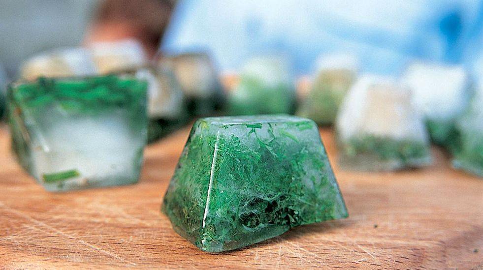 Кубики льда с укропом