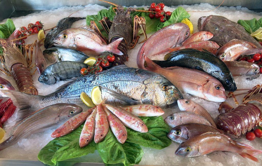выбор рыбы